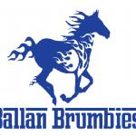 Ballan Logo Blue (002)